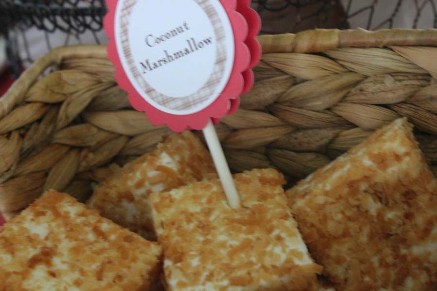 gourmet toasted coconut marshmallows